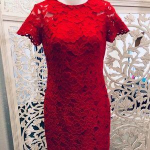Stunning Lauren short sleeve, lace dress size 0p